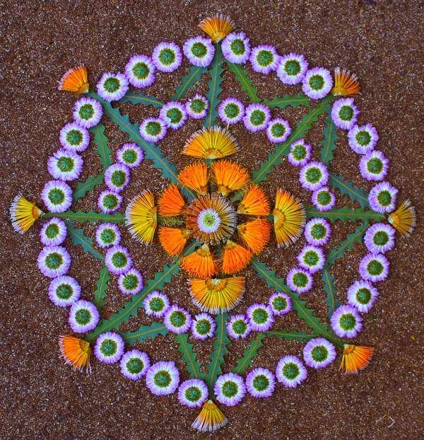 Mandala Mandala art, Flower mandala, Nature mandala