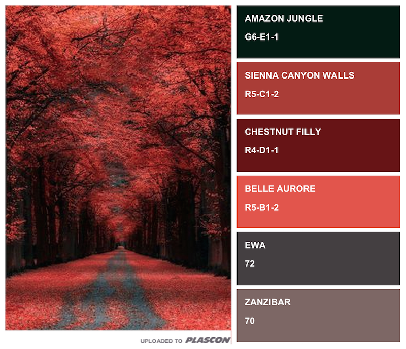 Autumn Paint Colours From Plascon Swatch It App, Image