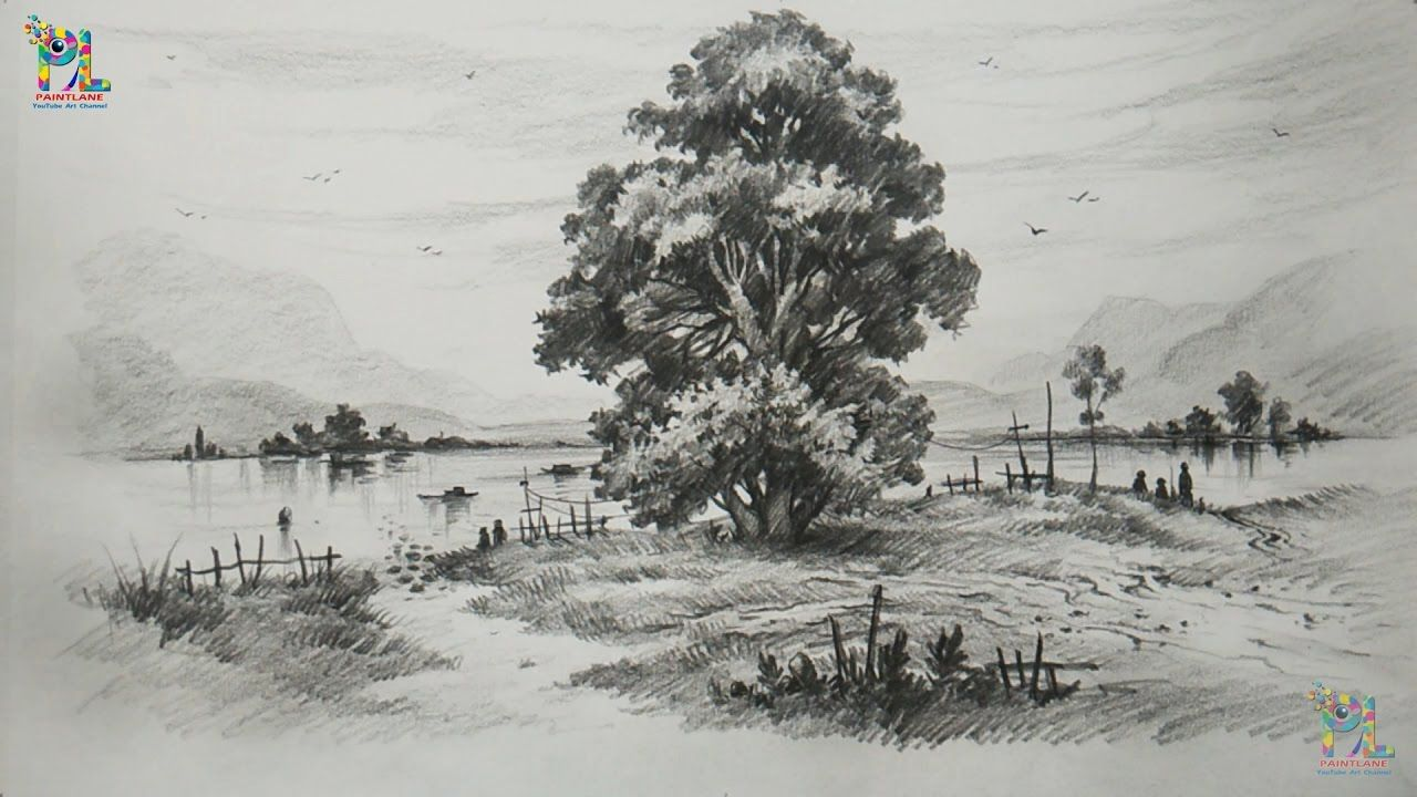 How To Draw And Shade A Tree In A Beautiful Landscape With Pencil Step Cool Landscapes Landscape Drawings Drawings