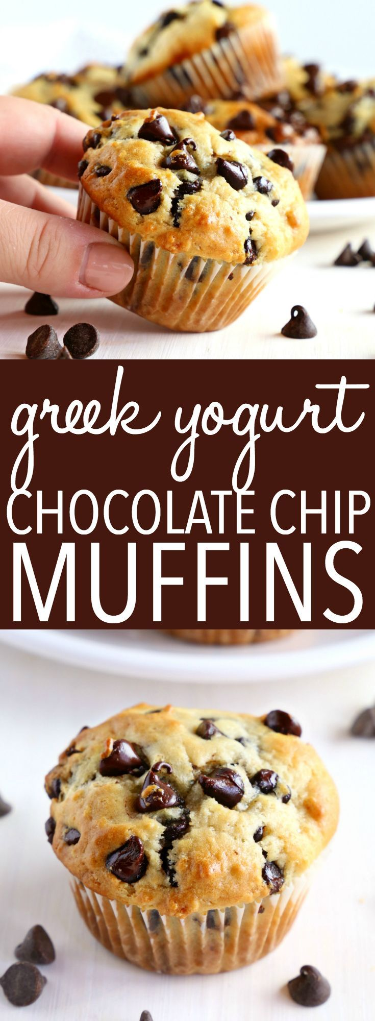 Best Ever Greek Yogurt Chocolate Chip Muffins – The Busy Baker