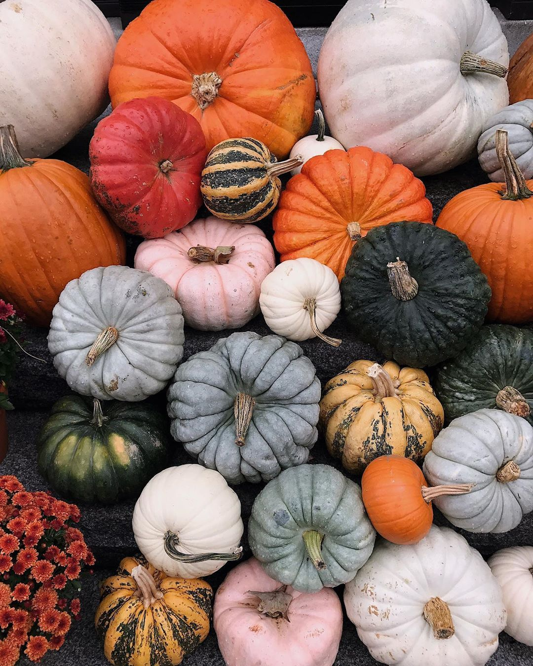 Pin by Abigail Vork on SEASONS (With images) | Autumn ...