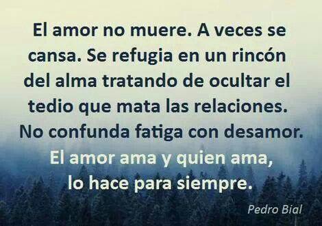 Amar es para siempre