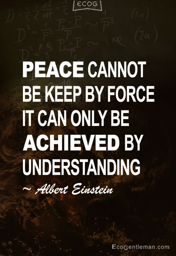 Famous Quotes About Peace Peace Cannot Be Keepforce It Can Only Be Achieved.