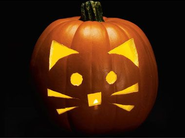 pumpkin pattern 3 cats whiskers pumpkin carving old school - Cool Halloween Pumpkin Designs