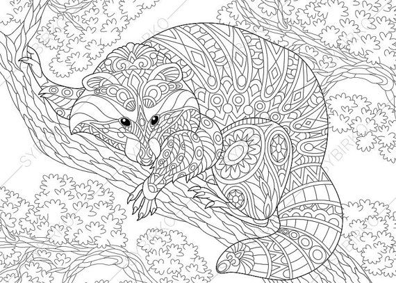 Mandalas Para Colorear Con Animales Y Zentangles: Raccoon. Coloring Pages. Animal Coloring Book Pages For