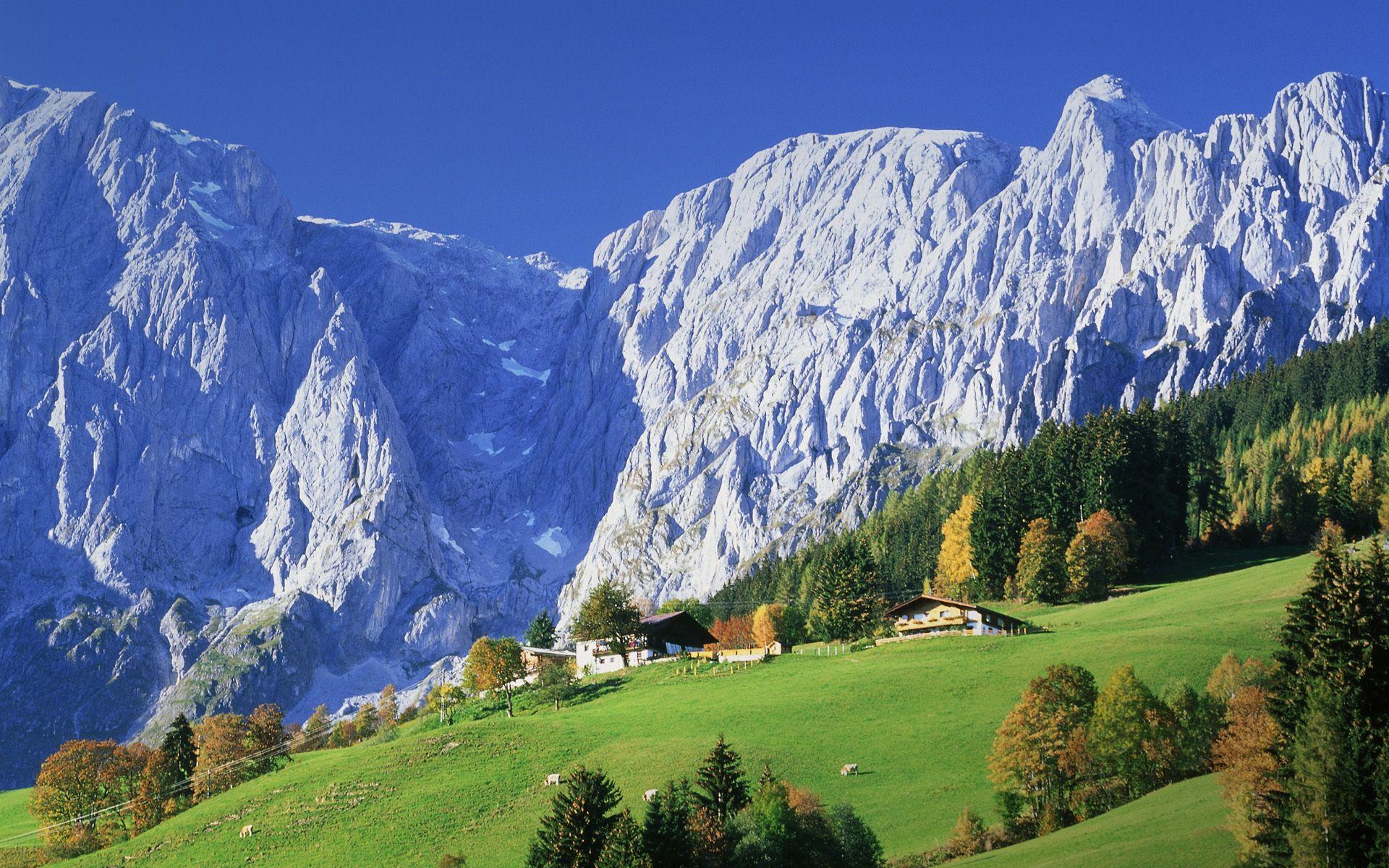 Heidi hills from austria 2