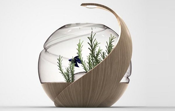 Stylish, Self-Cleaning Fish Tank Is A Perfect Addition To Your Home - DesignTAXI.com