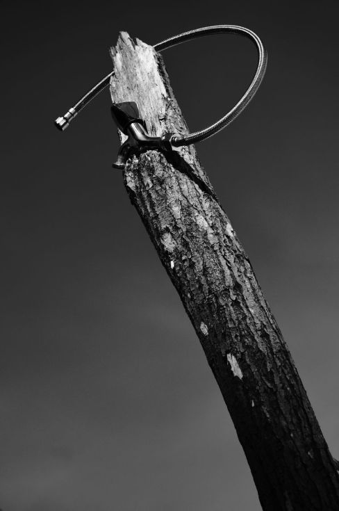 ARTFINDER: Old tap by Koit Ratas - Old tap  Which can say one old tap, It is an inspiration or creativity,  or will , to be somebody.  #photography  #blackandwhitephotography #blog #story #old #tree #sky