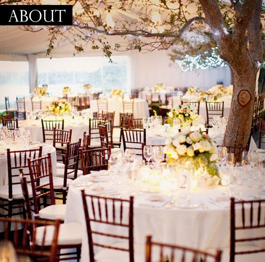 Google image result for httpchairhireperthfilestiffany natural wedding in a pavilion featuring the chiavari chair junglespirit Choice Image