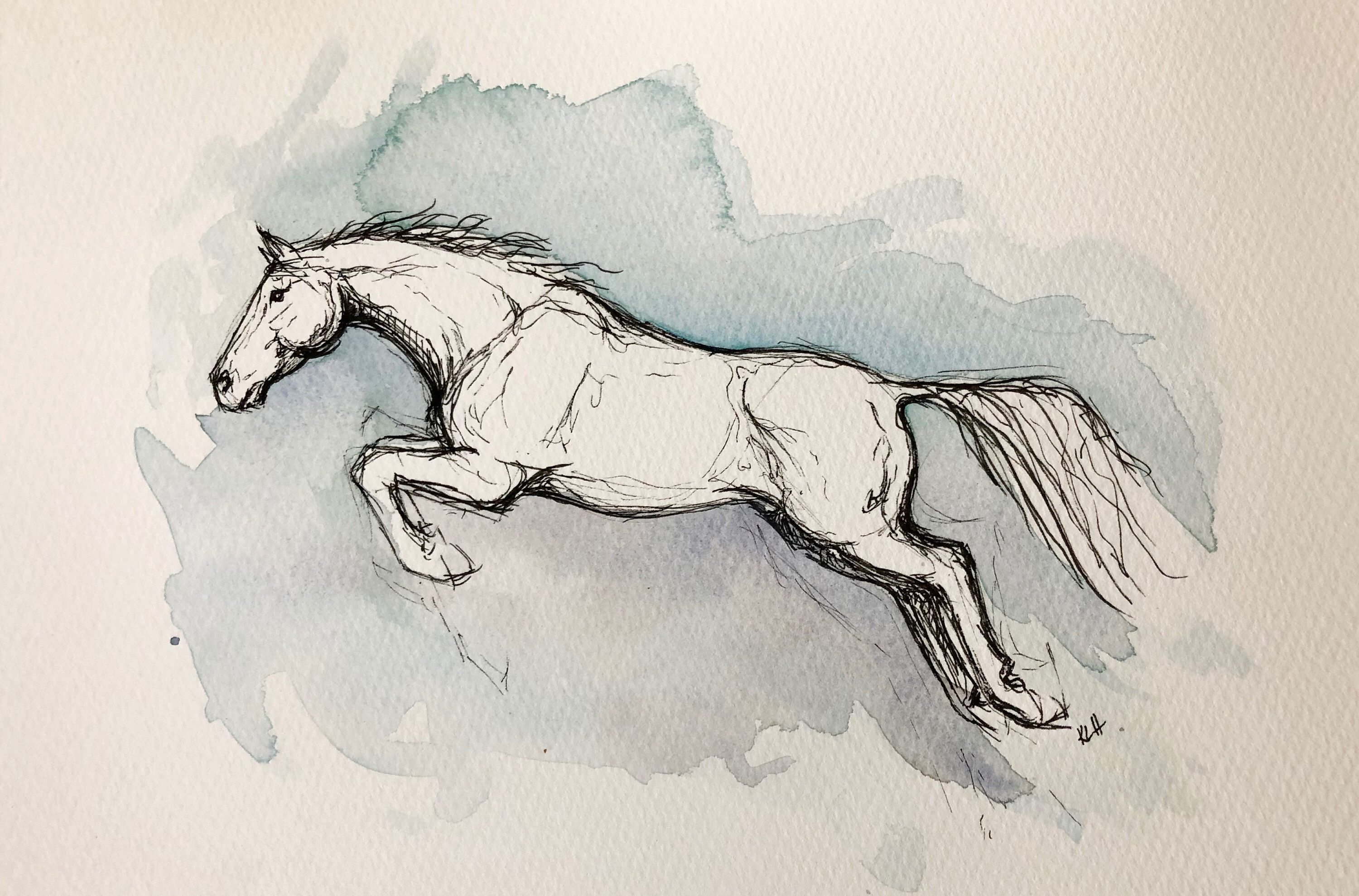 Original Watercolor And Ink Art Jumping Horse Etsy In 2020 Horse Drawings Horse Sketch Watercolor Horse
