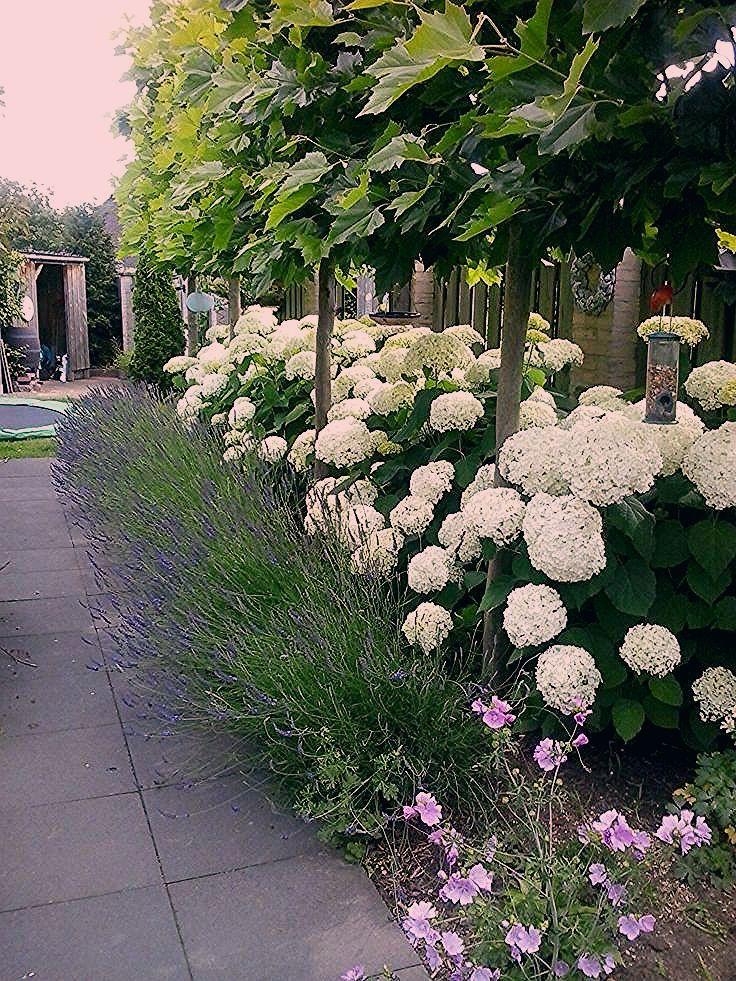 Ohne Titel - Wintergarten Ideen - Gartengestaltung Ideen