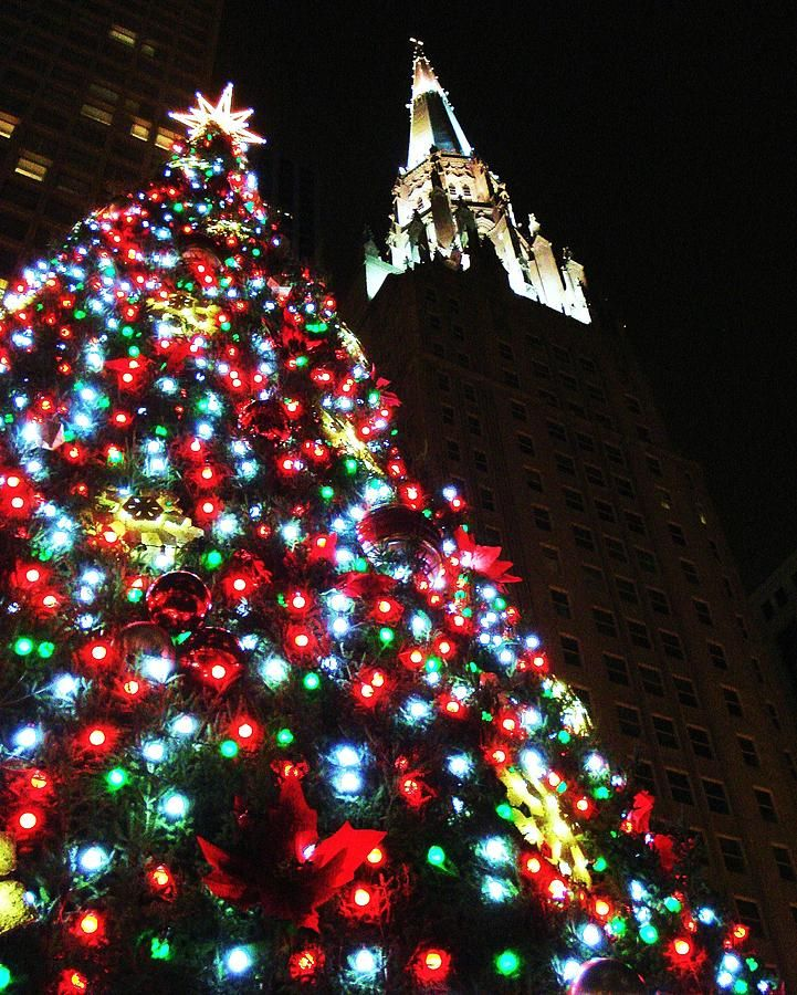 2021 Chicago Christmas Tree Christmas In Chicago By Benjamin Yeager In 2021 Christmas World Christmas Wishes Christmas