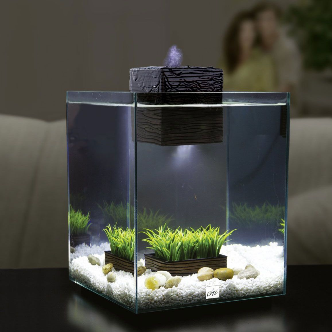 Zen garden aquarium seasonal style let spring in for Decoration zen aquarium