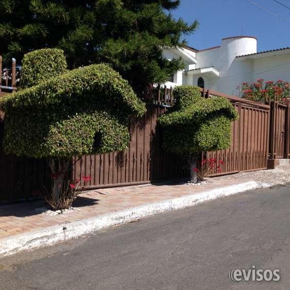 casa en renta en la col. villas de irapuato casa de dos