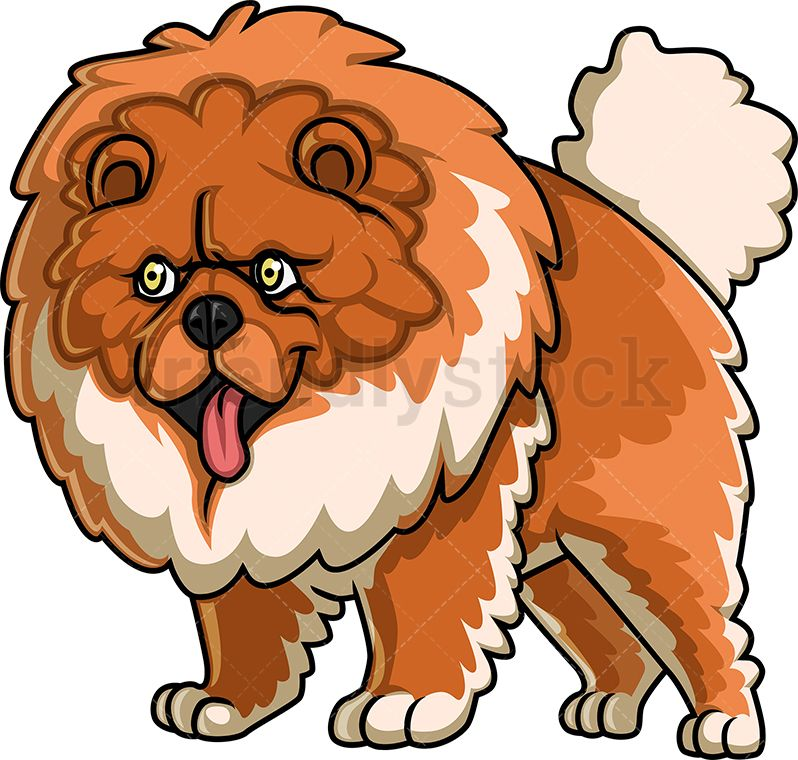 Huge Chow Chow Dog Cartoon Dog Chow Chow Dogs