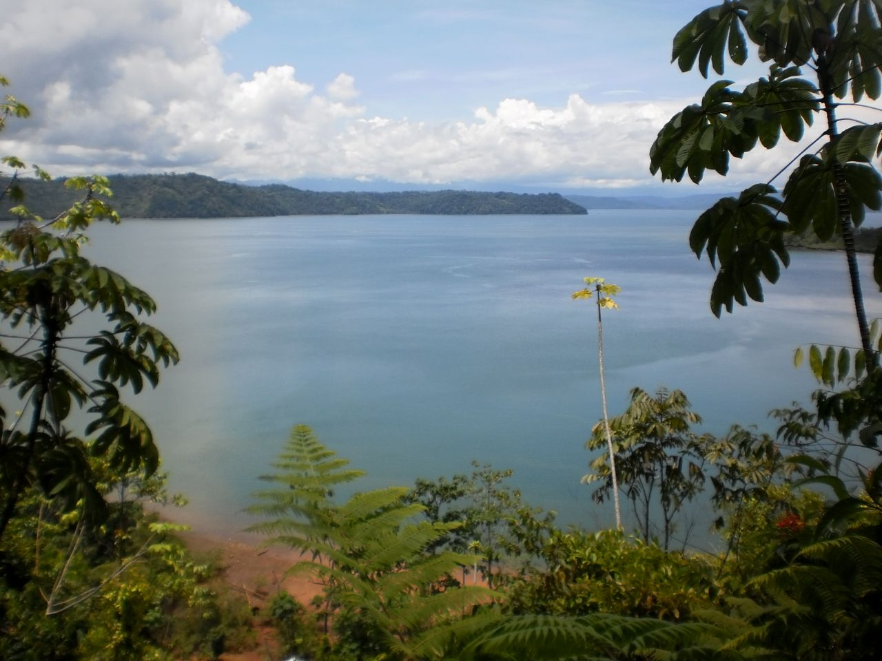 A peek-a-poo view along the trail in the rain forest of the Golfo Dulce! So breathe-taking.