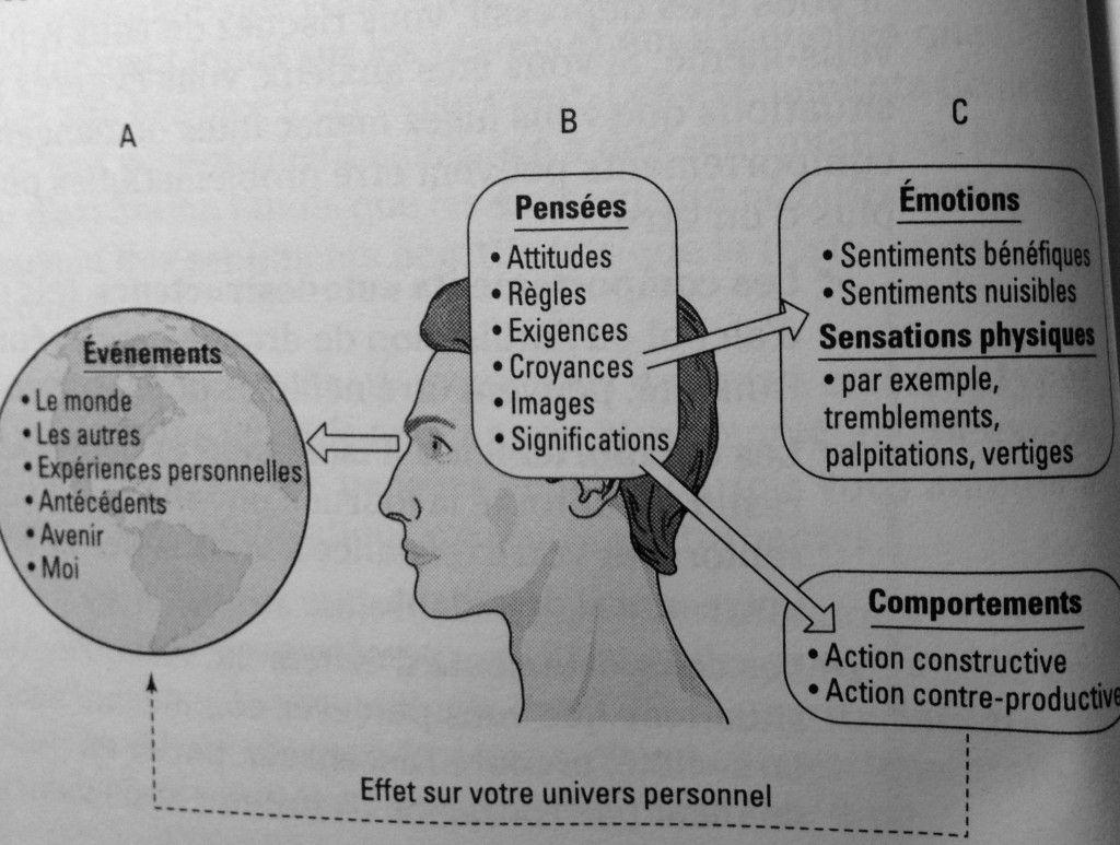 Parents Comment Eviter De Ceder A La Colere Therapie Comportementale Emotions Therapie Cognitive Comportementale