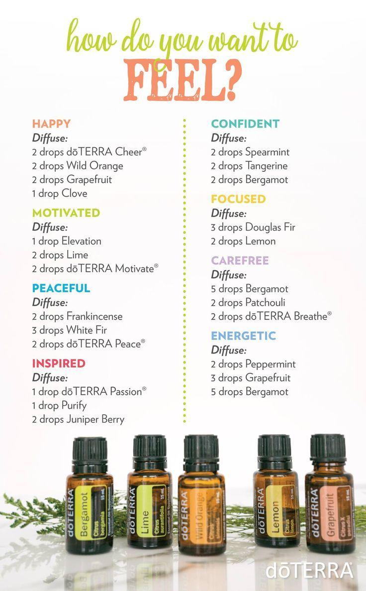 Essential Oils   Terra essential oils, Essential oil