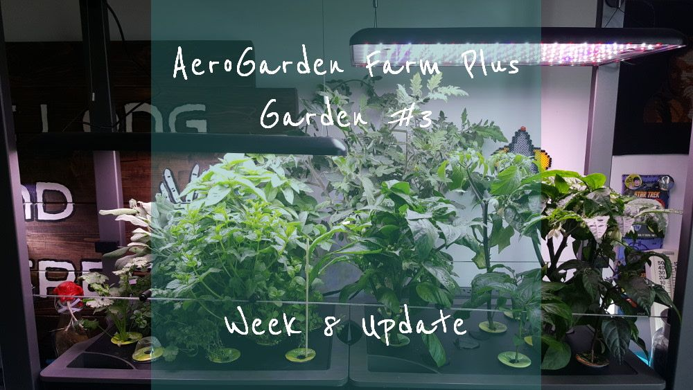 Aerogarden Farm Plus Garden 3 Week 8 Update How To 400 x 300