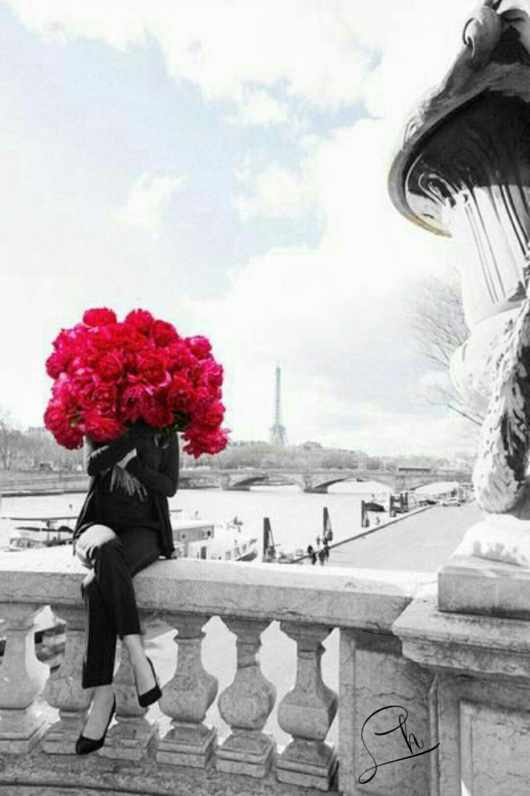 Pin De Mari Em Bom Dia Boa Fotos Rosas Arranjos De Flores