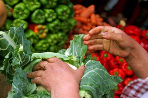 La dieta mediterránea reduce hasta un 66% el riesgo de sufrir cáncer de mama / Noticias / SINC