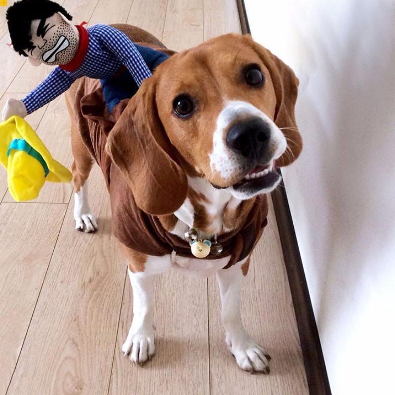 Hot Jockey Riding On Pet Costume Top Selling Cowboy Dog
