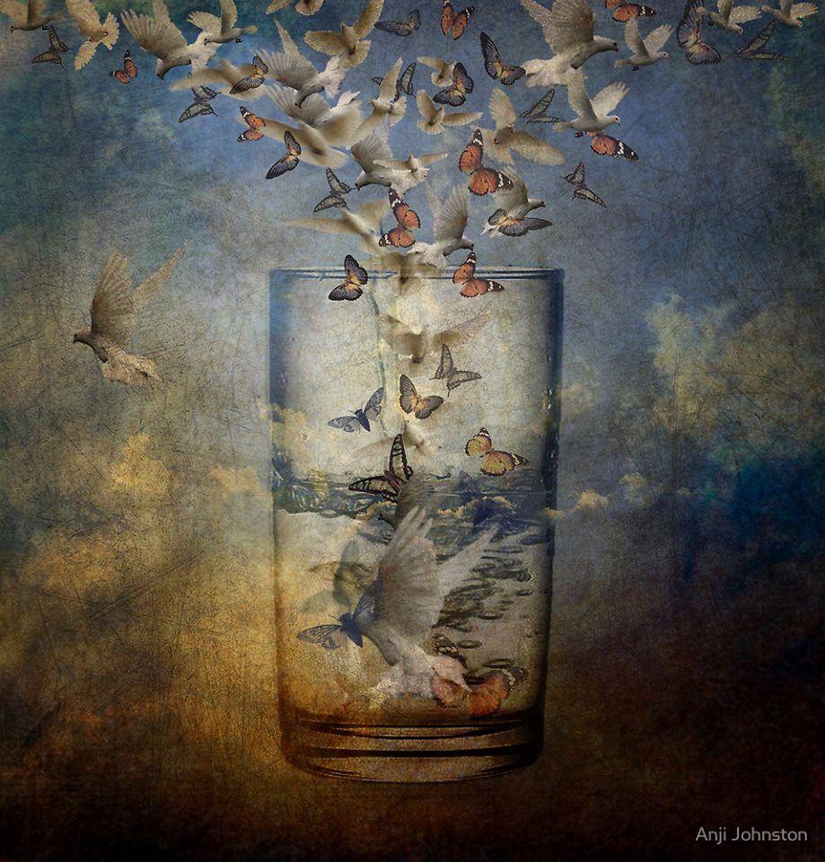 сосуды расположены картинка птицы вылетают из банки что делать, если