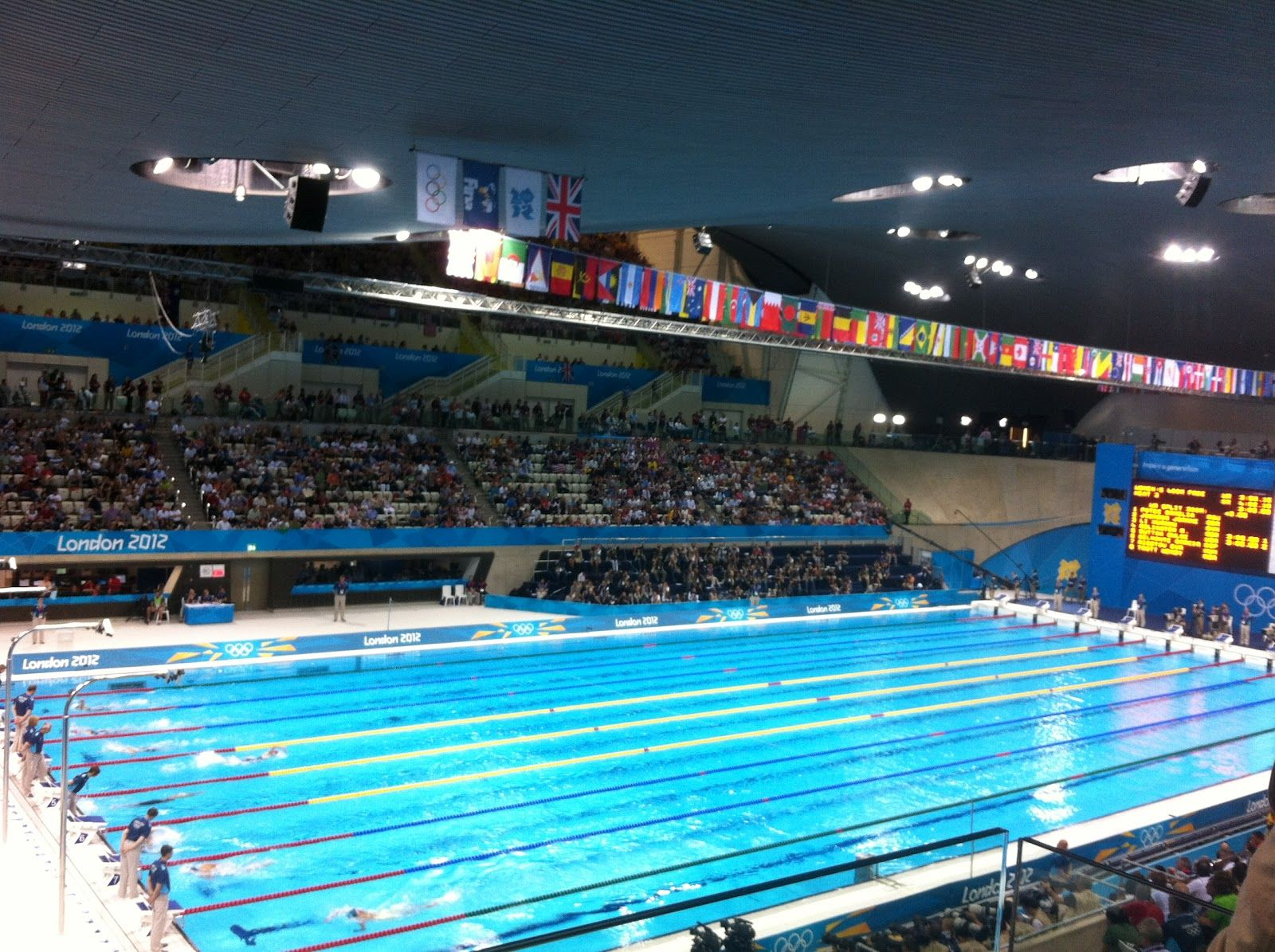 olympic swimming pool lanes