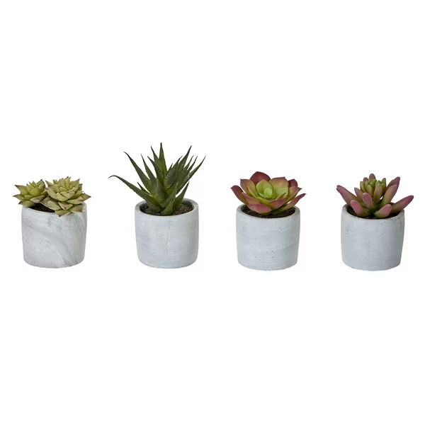 4 Piece Desktop Succulent Plant In Pot Set Planting Succulents Faux Plants Succulents