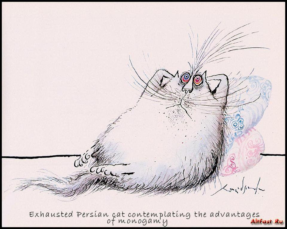 Сделать фотошопе, смешные картинки с рисованными кошками