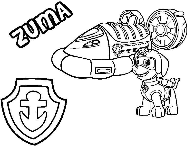 Zuma His Hovercraft And Badge Pinyar Paw Patrol Coloring