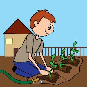 growing plants from seeds clip art � cliparts