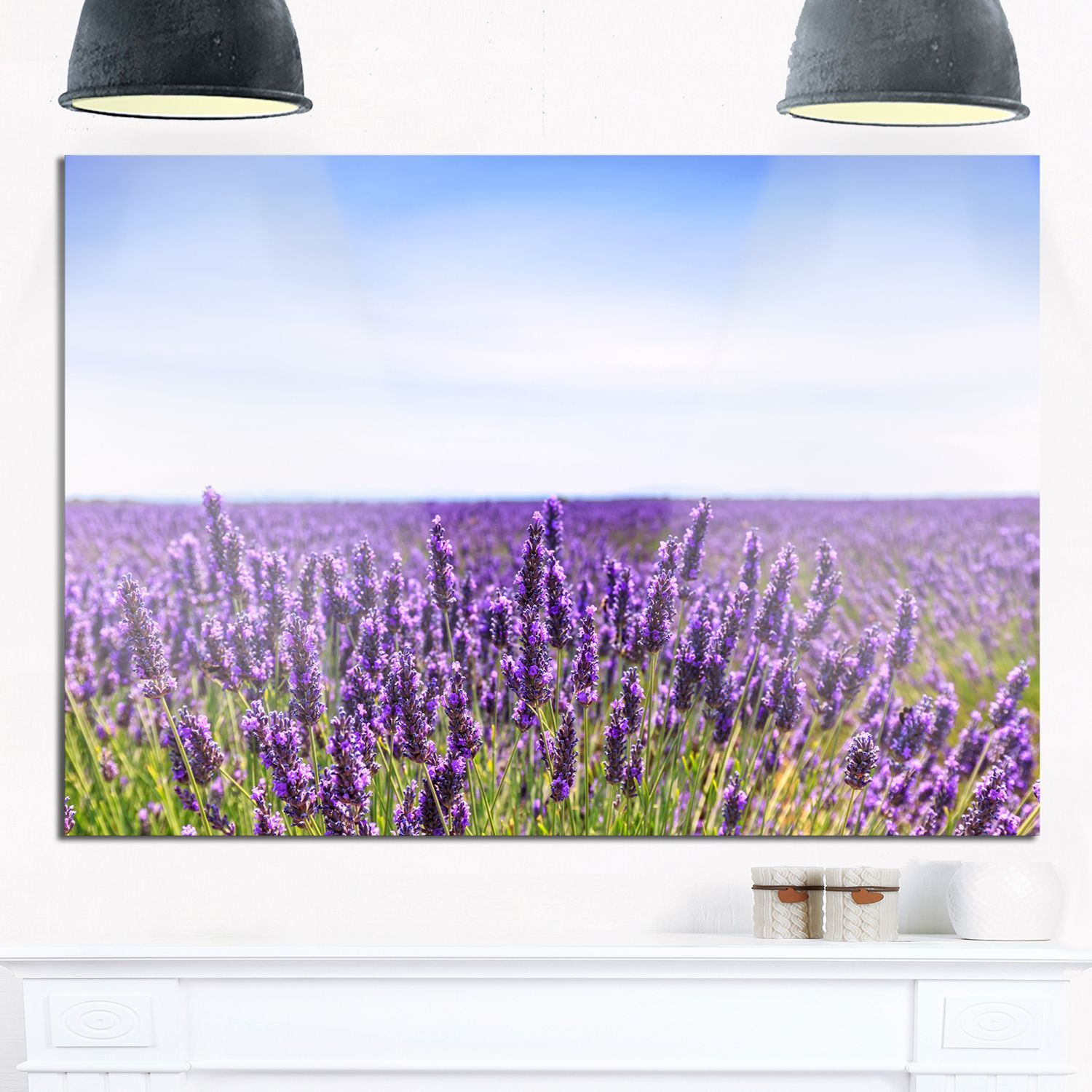 Close View of Lavender Flower Field - Oversized Landscape Glossy Metal Wall Art