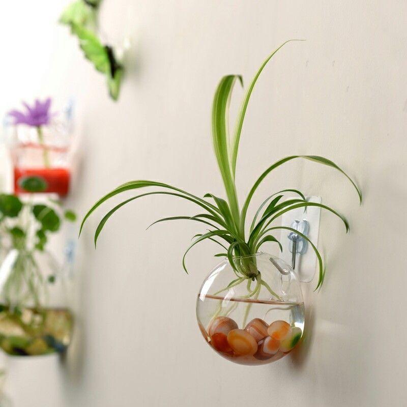 Hanging Terrarium Glass Flower Vase Plants Pot Container Home Garden Decor