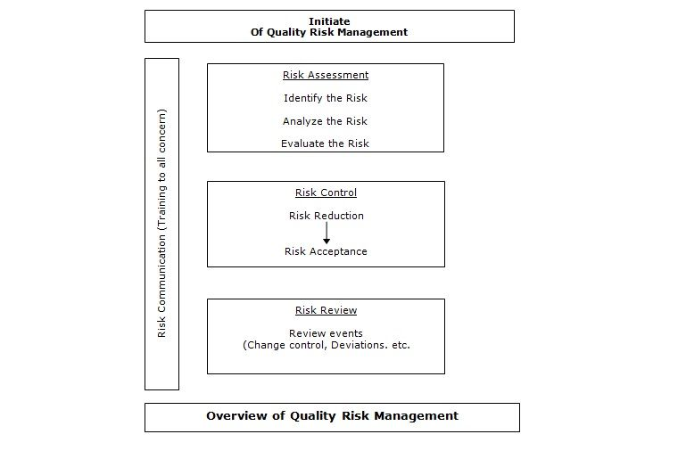 Mind Map Of Risk Management Assessment  Mind Maps