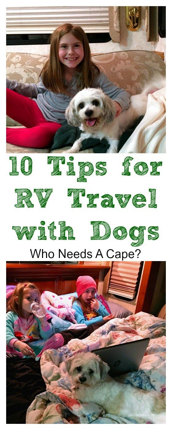 10 Tips for RV Travel with Dogs - Who Needs A Cape?