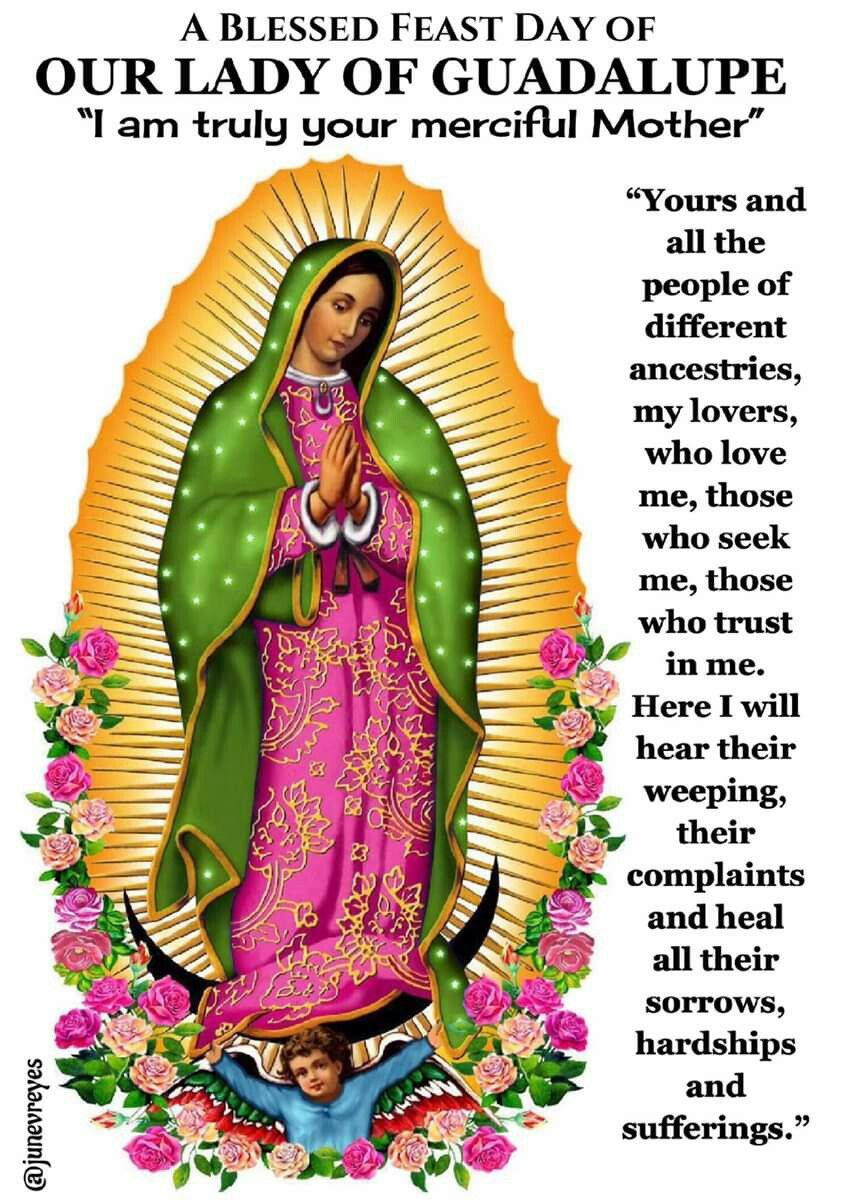 Our Lady of Guadalupe December 12 Lady guadalupe