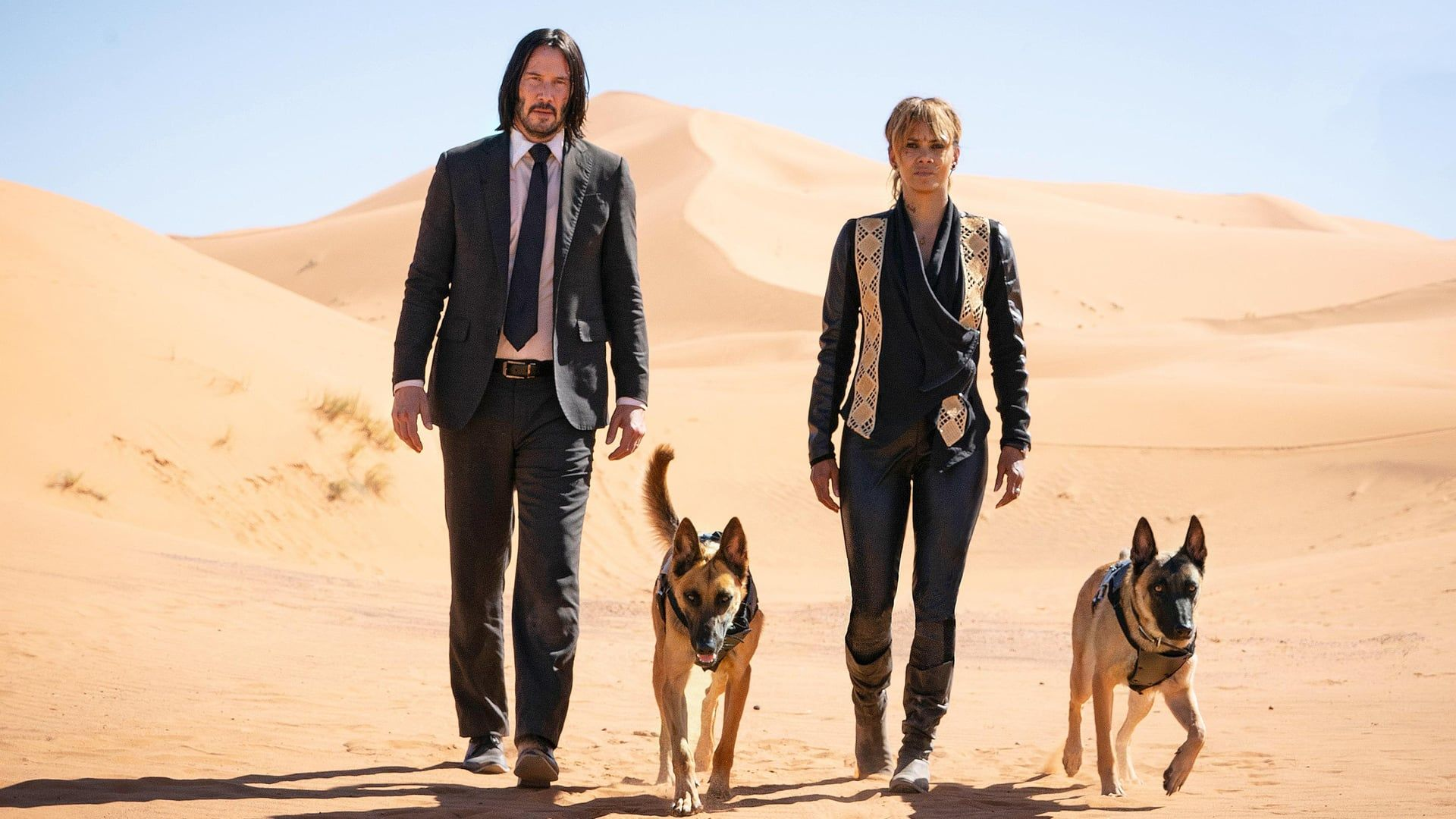 John Wick 3 Parabellum 2019 Streaming Ita Cb01 Film Completo Italiano Altadefinizione John Wick E In Fuga Per Due Keanu Reeves Movies Keanu Reeves John Wick