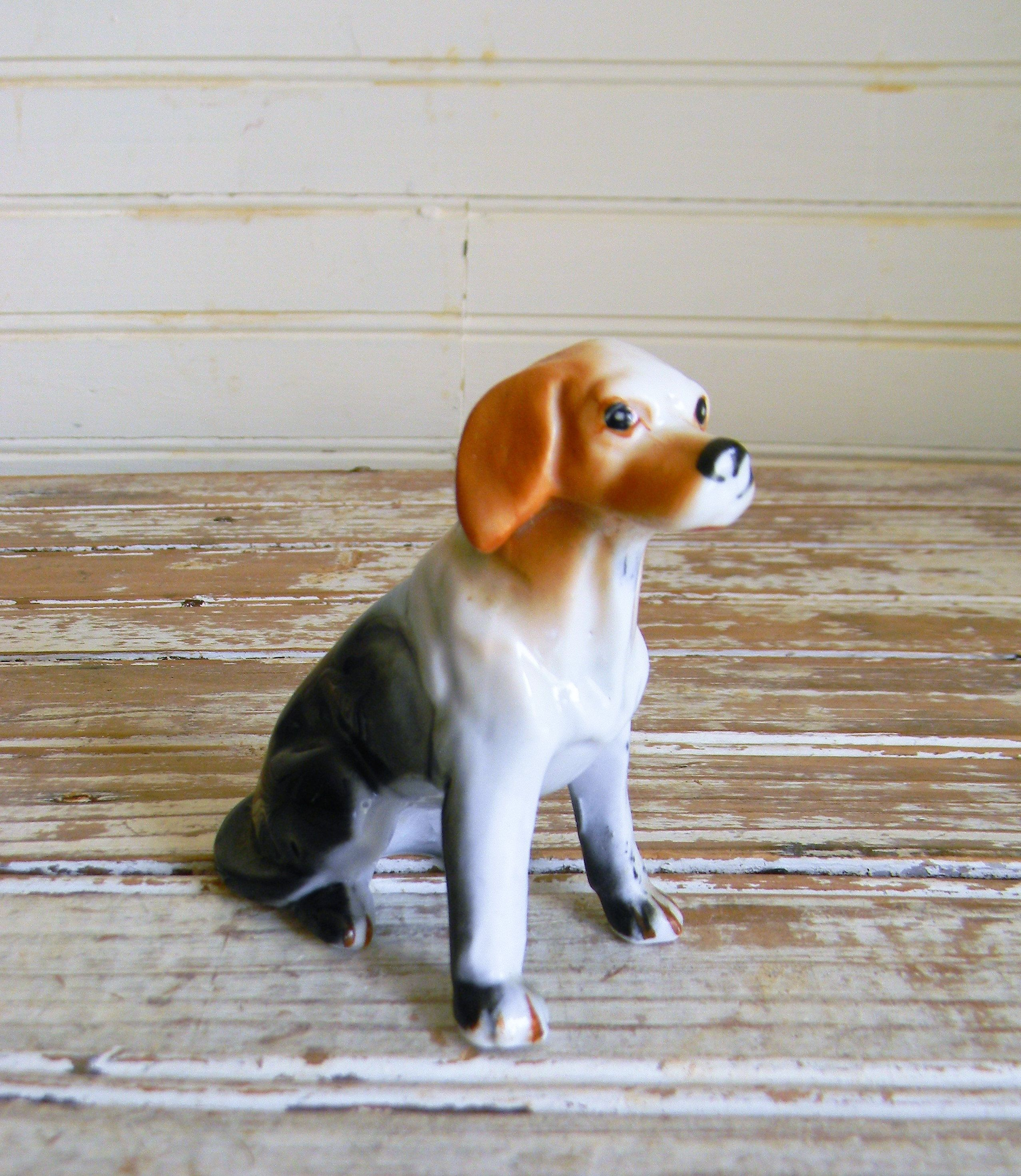 Beagle Dog Beagle Dog For Sale Beagles For Sale Online Beagle Female For Sale Puppies For Sale Uk Pocket Beagle For Sale Beagl Beagle Dog Beagle Dogs