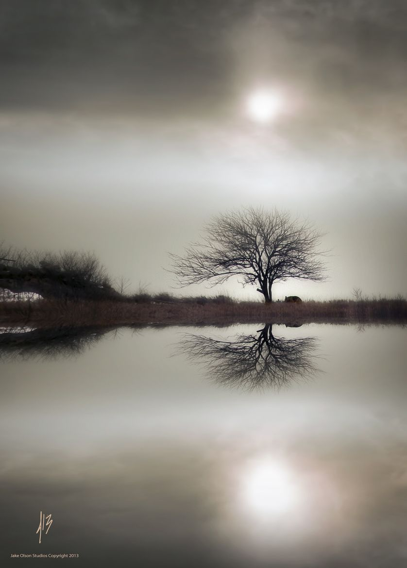 Photograph Lonely Reflection by Jake Olson Studios by Jake Olson Studios on 500px