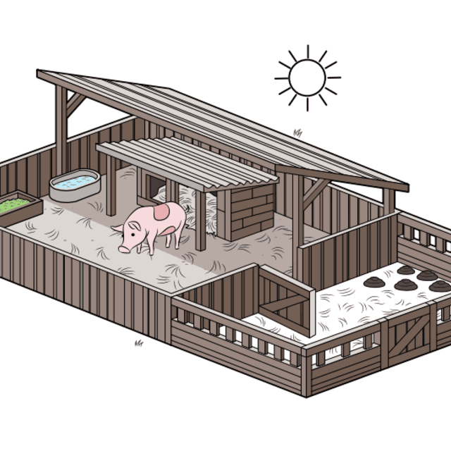 Outside Pen For My Future Mini Pigs Charlotte And Wilber