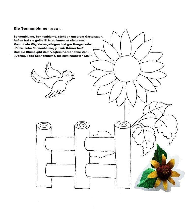 pin von anke krest auf basteln mit kindern  sonnenblumen