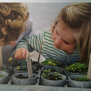 Herb garden with kids