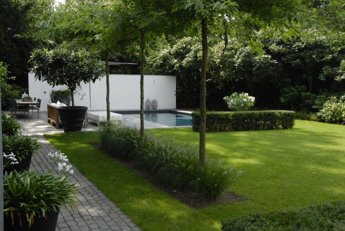 Anne laansma pure eenvoud in een moderne tuin met zwembad hoog