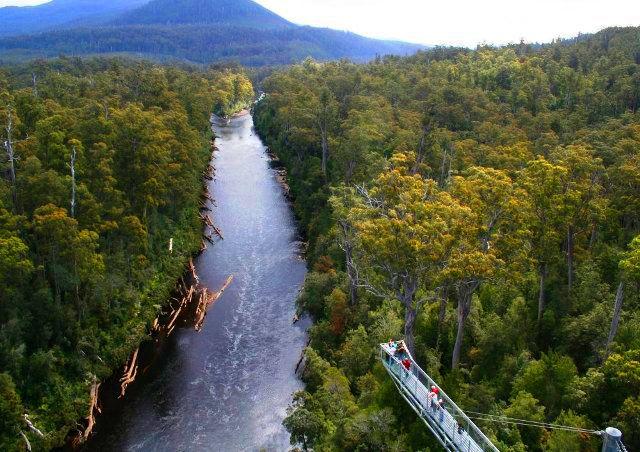 """Über den """"Tahune Forest Airwalk"""" (Baumwipfelpfad) in Tasmanien wandern"""