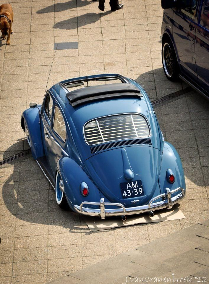 Sic Photo Vw Volvo Pinterest Vw Volvo And Beetles