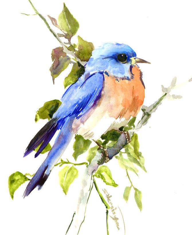 Eastern Bluebird Artwork Original Bird Wall Art Blue Bird Cute