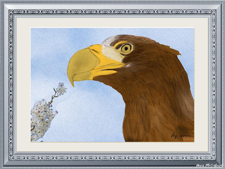 「スケッチ」の写真 Google フォト【2020】 スケッチ, 写真, 鳥
