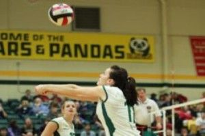 Volleyball Canada announces 2013 women's national team | newscanada-networknewscanada-network