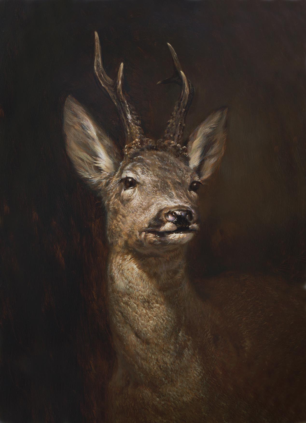 Deer Wildlife Art Paintings